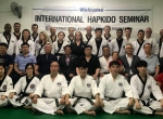 1-й инструкторский семинар Кёнгму Хапкидо. Ю.Корея, Сеул.