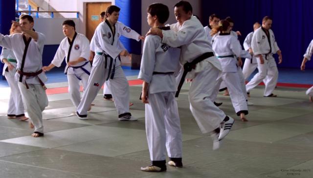 essay  the history of taekwondo